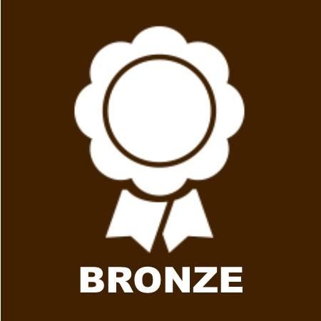 bronzesponsoricon