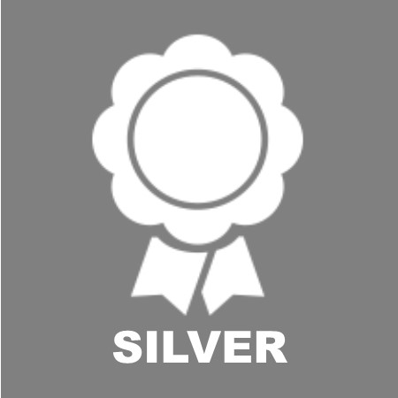 silversponsoricon
